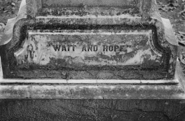 Wait and Hope.