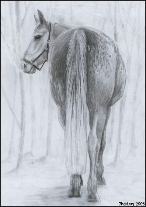Lothlorien in the mist by Skarbog