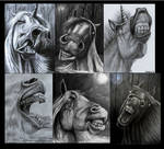 Dark horse project completed