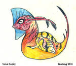 Toruk Ducky