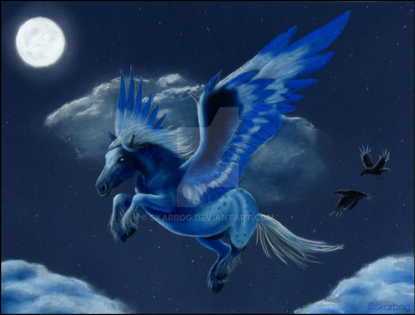 Midnight Pegasus