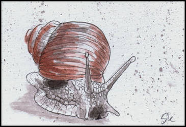 025 inktober 2015 - Skarbog