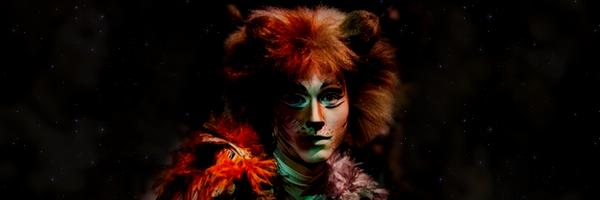 CATS banner by xXLionqueenXx