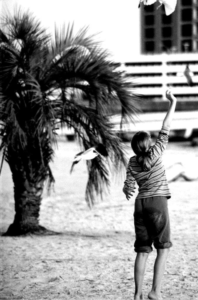 Biloxi Beach 03 by fingers2002