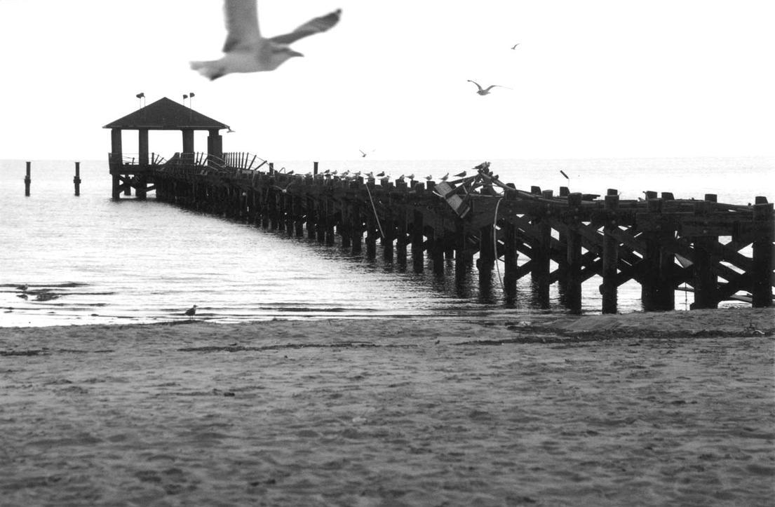 Biloxi Beach 04 by fingers2002