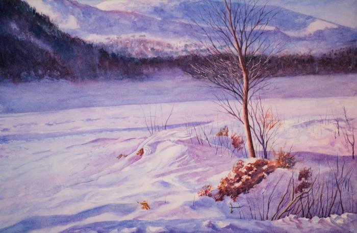 January Sun by EinarAasen