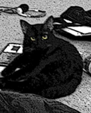 CresentV's Profile Picture