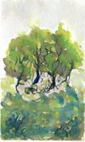 Watercolor Trees (Practise)
