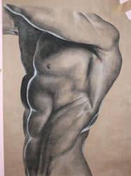 Anatomy and Light Study by sealedfate