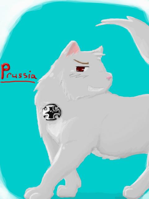 Prussia Cat by nightwindwolf95