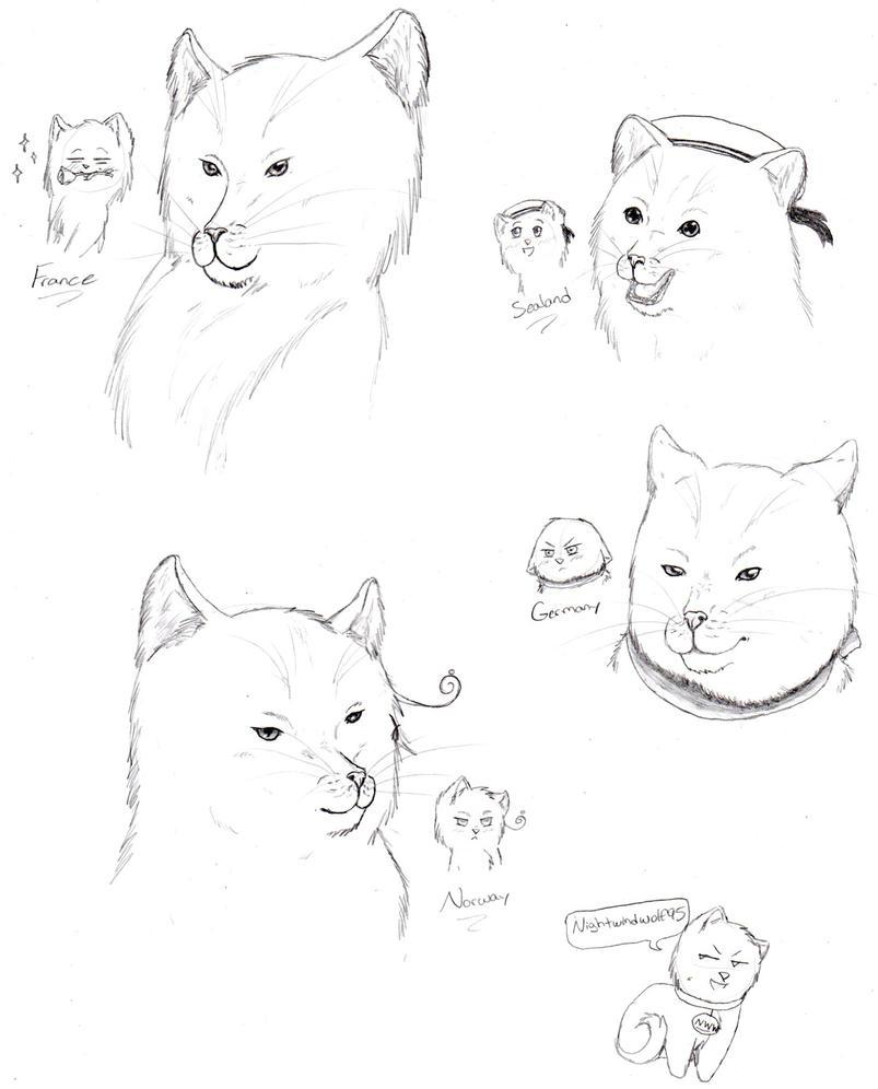 Realistic Hetalia Cats 3 by nightwindwolf95