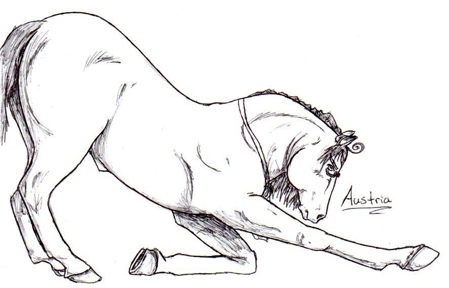 Austria Horse by nightwindwolf95