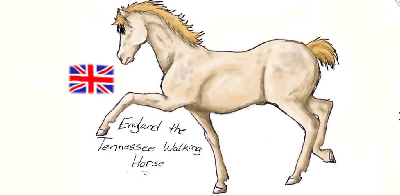 Colored England Horse by nightwindwolf95