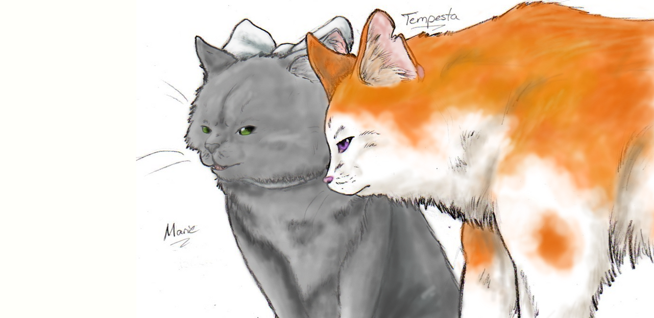 Tempesta and Marie by nightwindwolf95