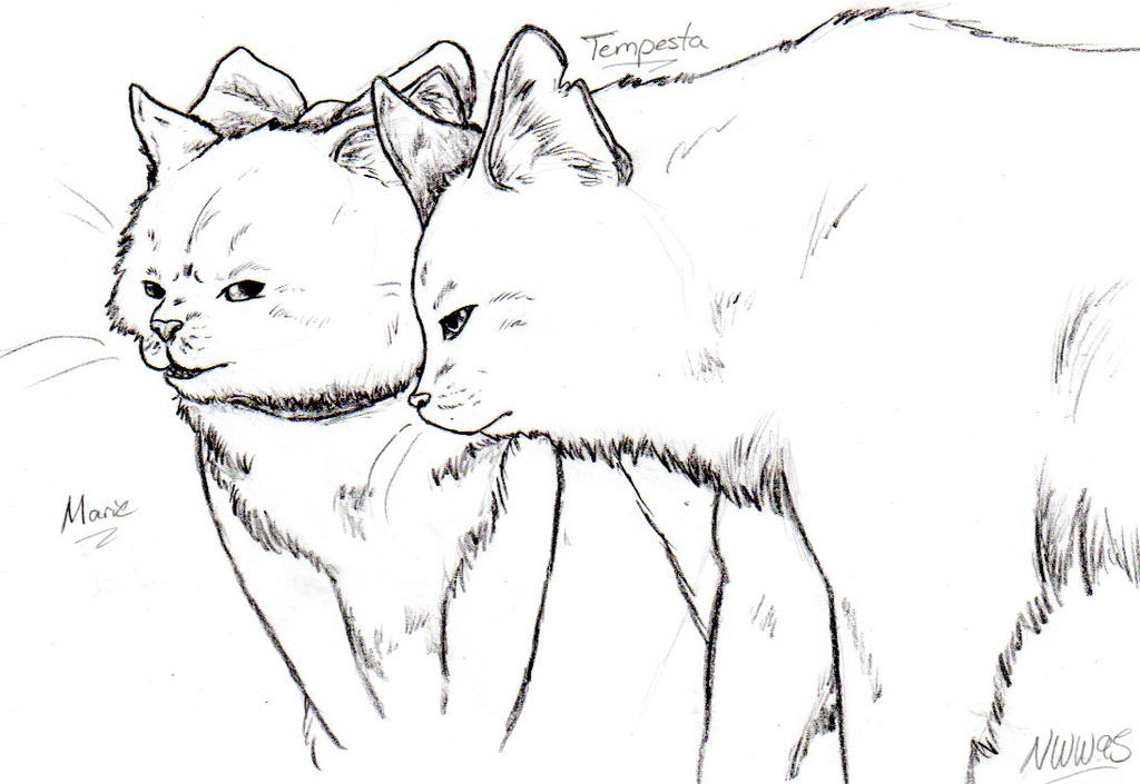 Tempesta and Marie original by nightwindwolf95