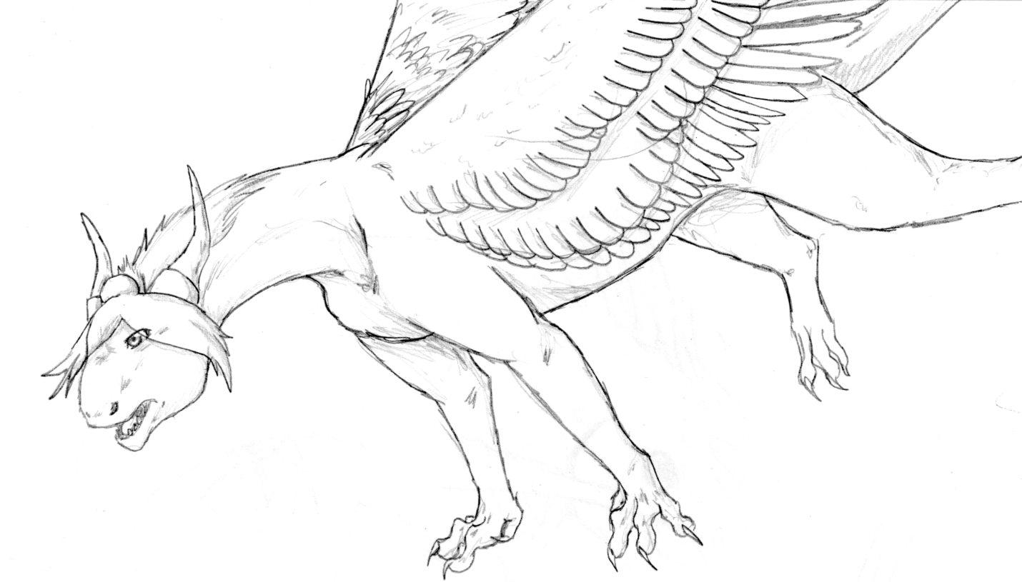 Konan Dragon Sketch by nightwindwolf95