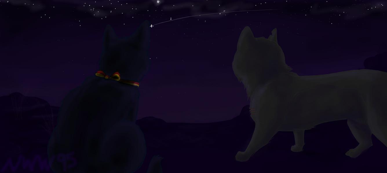 Winds of Change by nightwindwolf95