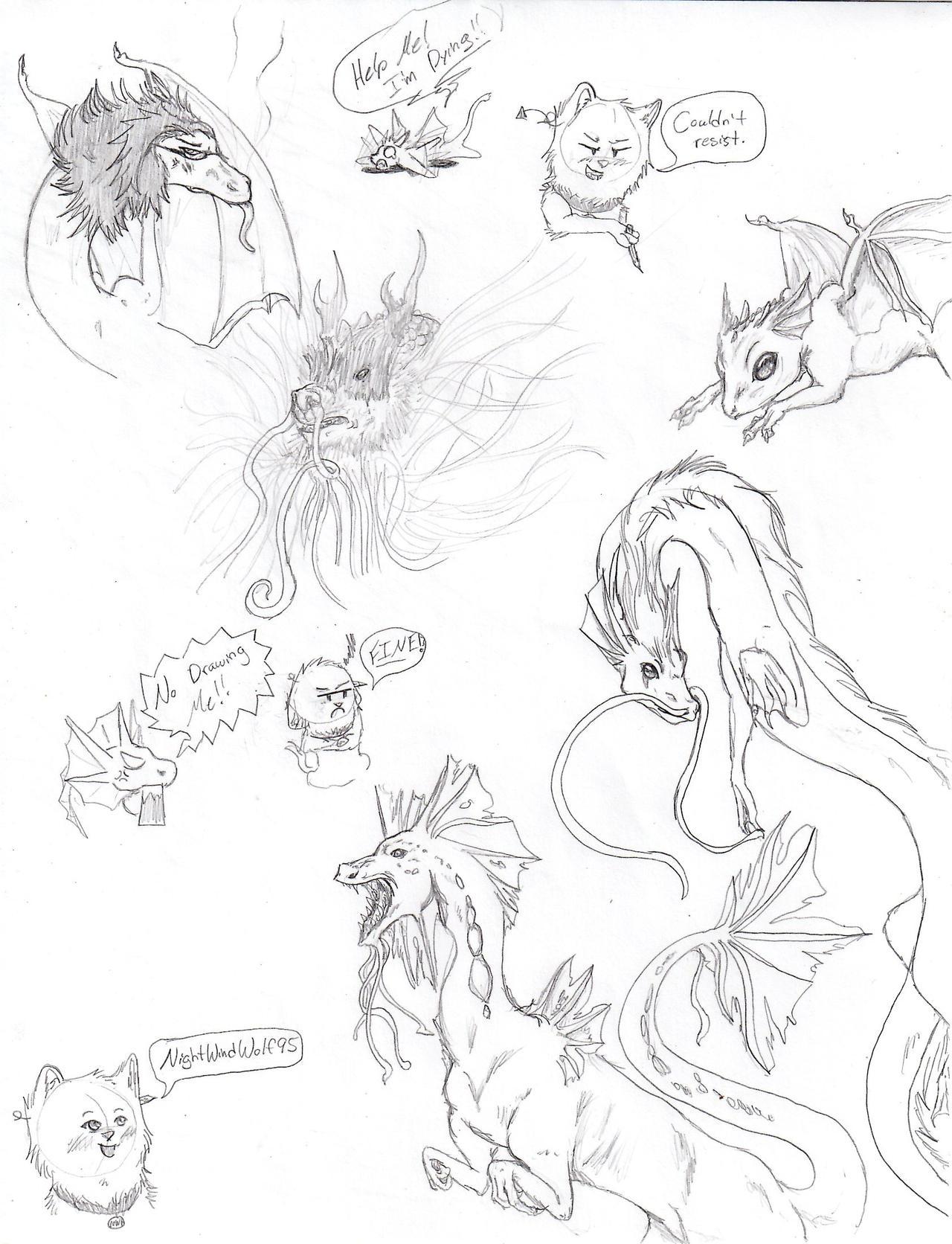 Dragon doodles by nightwindwolf95
