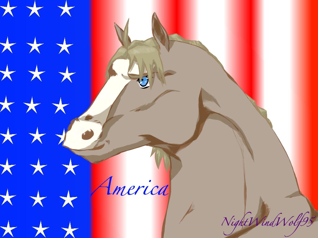 America Horse by nightwindwolf95