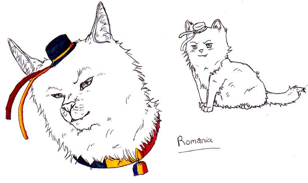 Romania Cat by nightwindwolf95