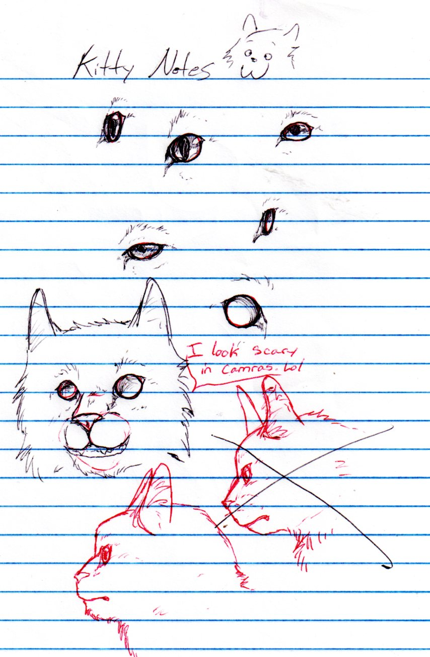 Kitty Notes by nightwindwolf95