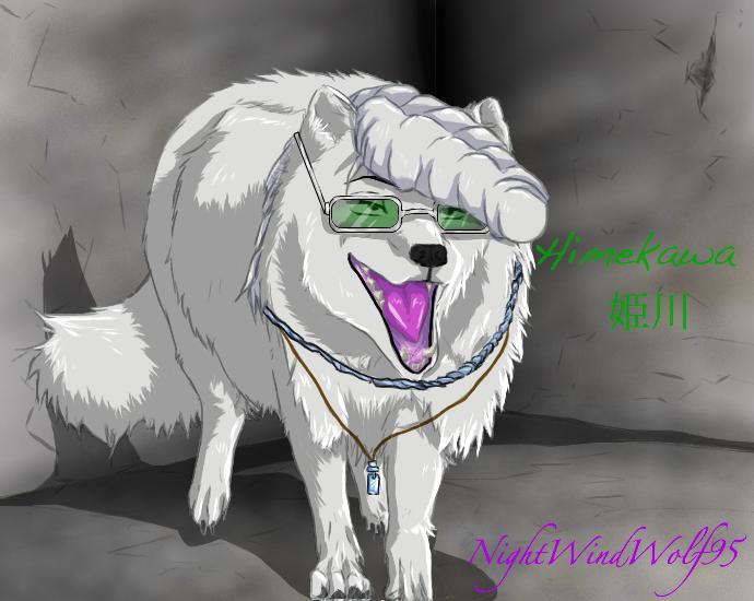 Arctic Fox Himekawa Tatsuya by nightwindwolf95