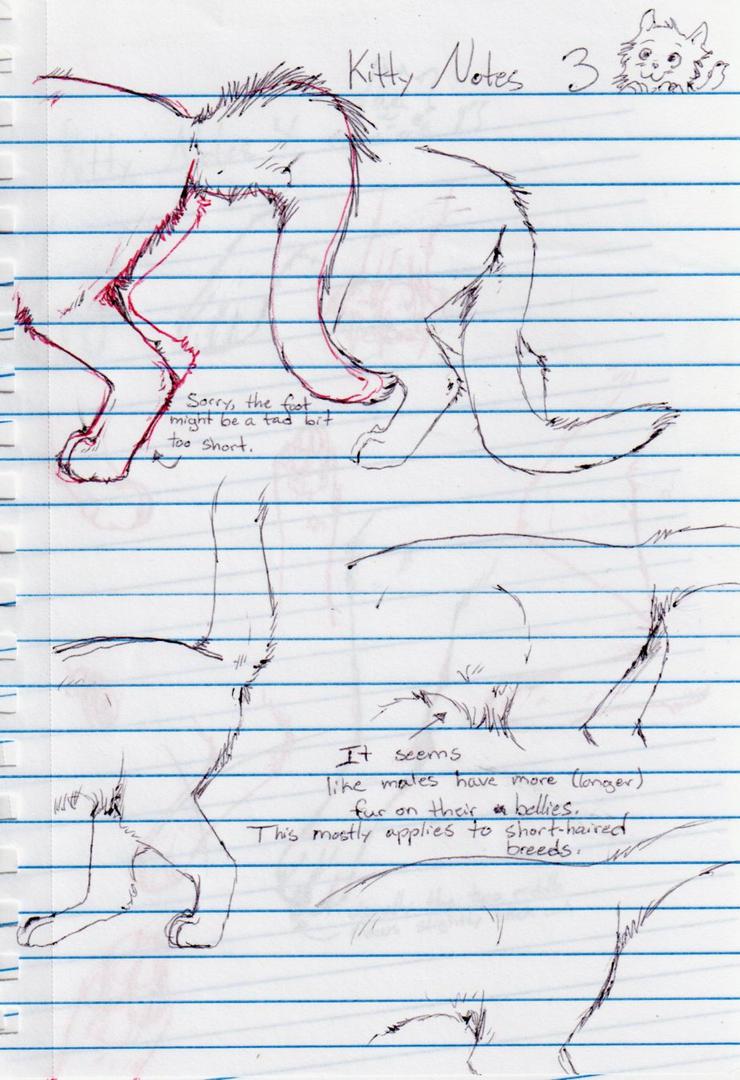 Kitty Notes 3 by nightwindwolf95