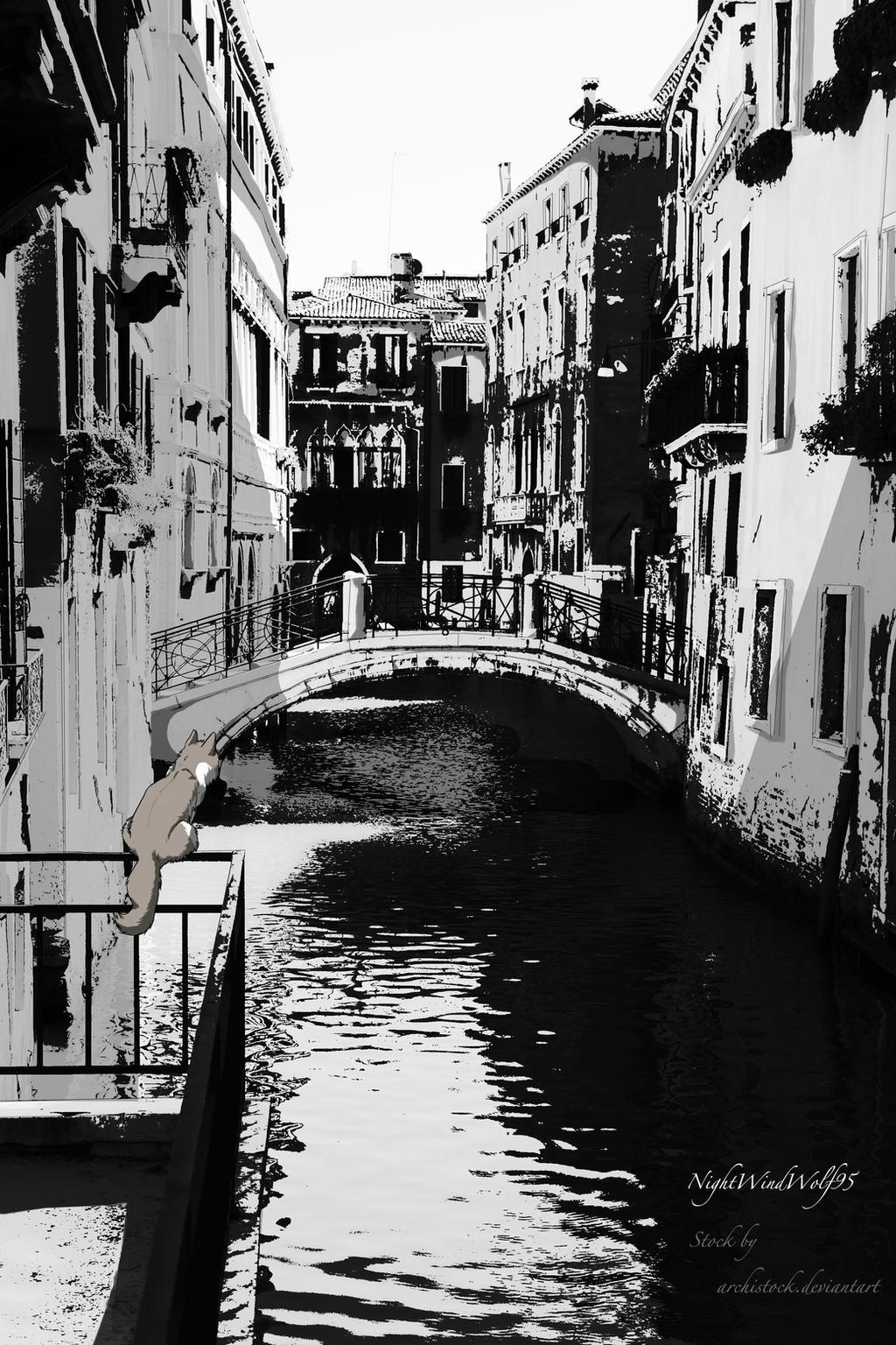 Dieser Weg: Venice by nightwindwolf95