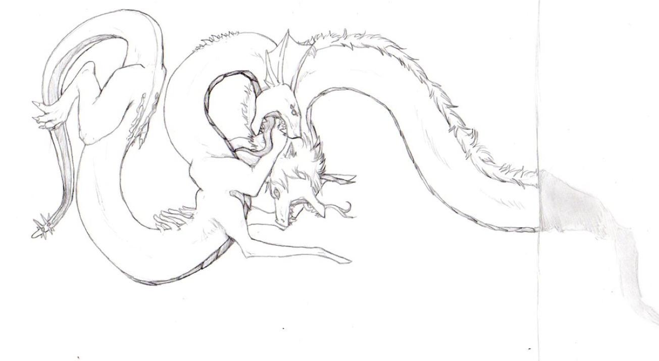 Battling Shadow Beasts by nightwindwolf95