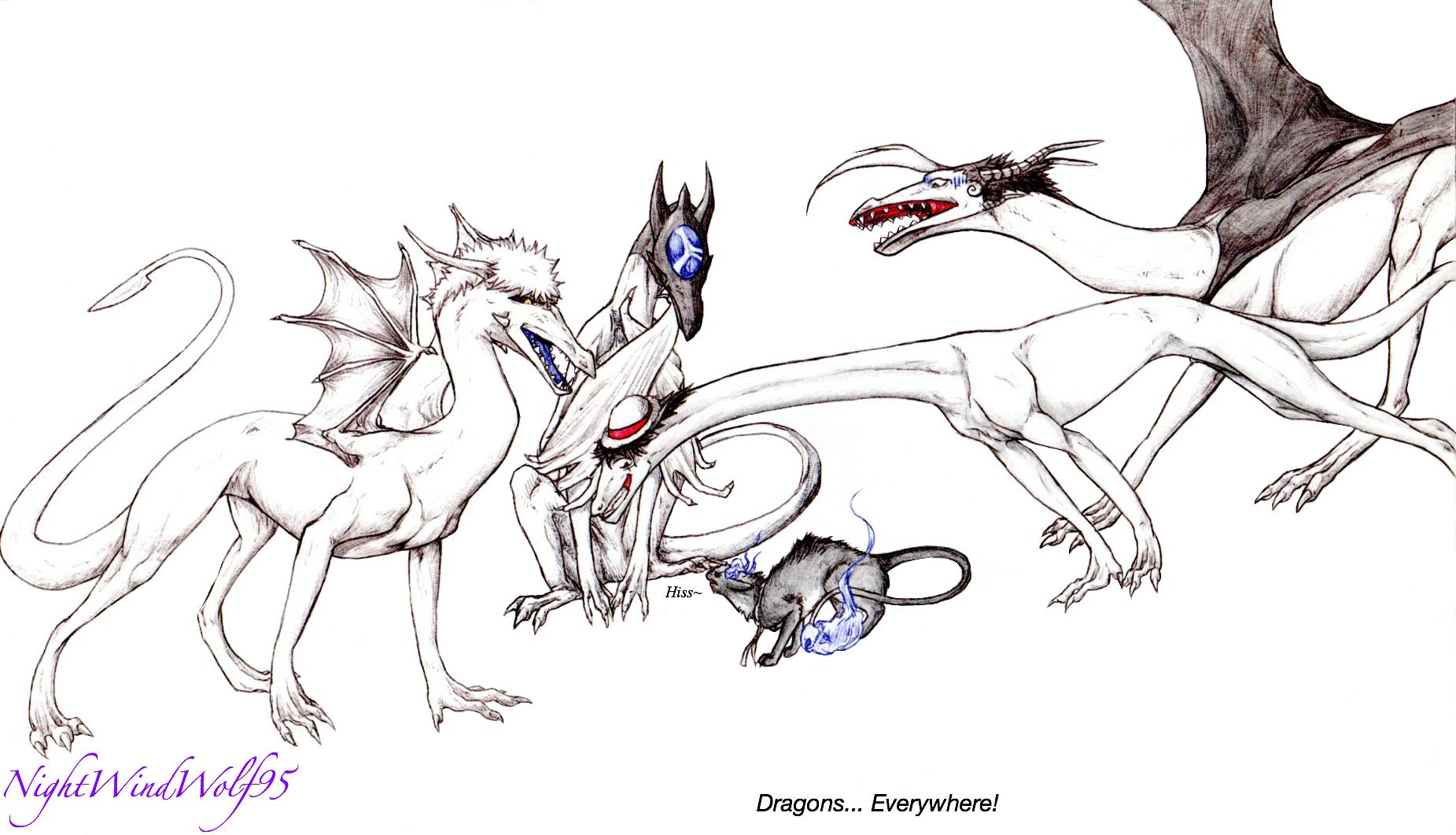 Dragons... Everywhere by nightwindwolf95