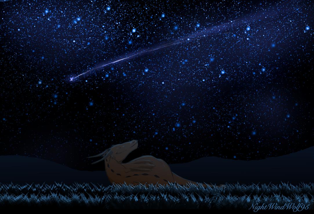 Derp Friday: Stargazing by nightwindwolf95