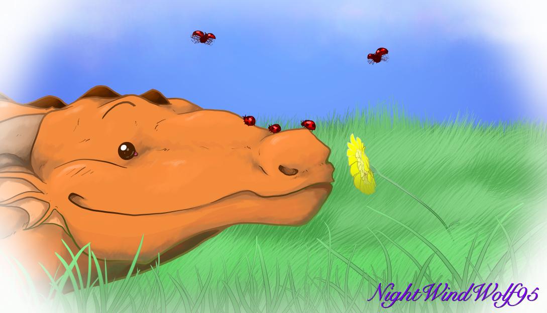 Derp Friday: Ladybugs by nightwindwolf95