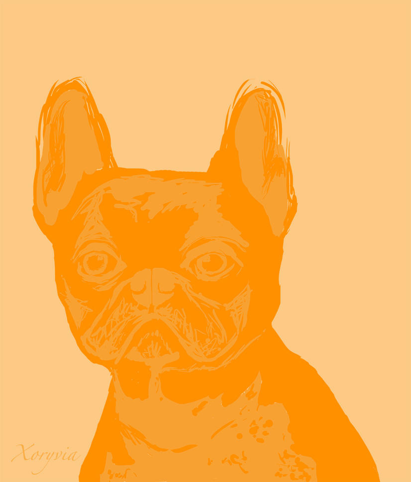 French bulldog by ne-zu-mi