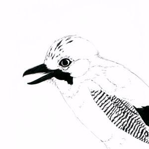 ne-zu-mi's Profile Picture