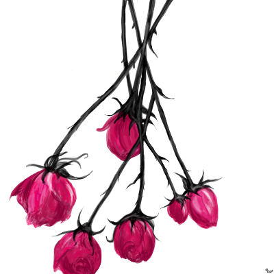 Roses by Missrlola