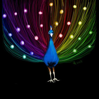 peacock by Missrlola