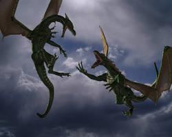 Dragon Fight by TsubasaShi