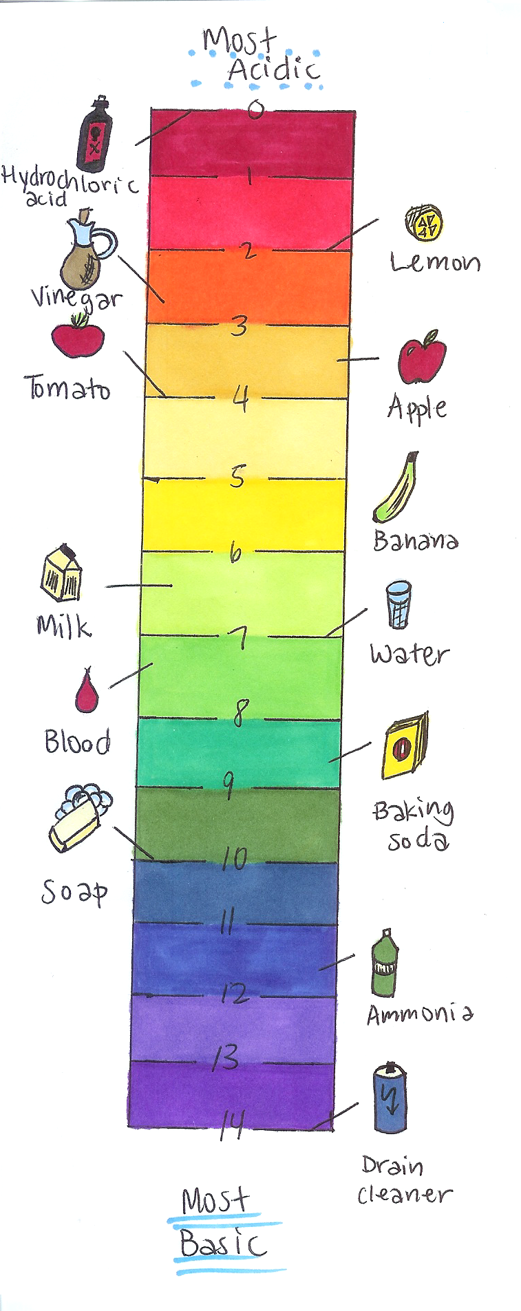how to make a weight scale for a science project