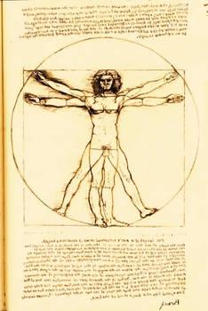 Study of Leonardo Da Vinci