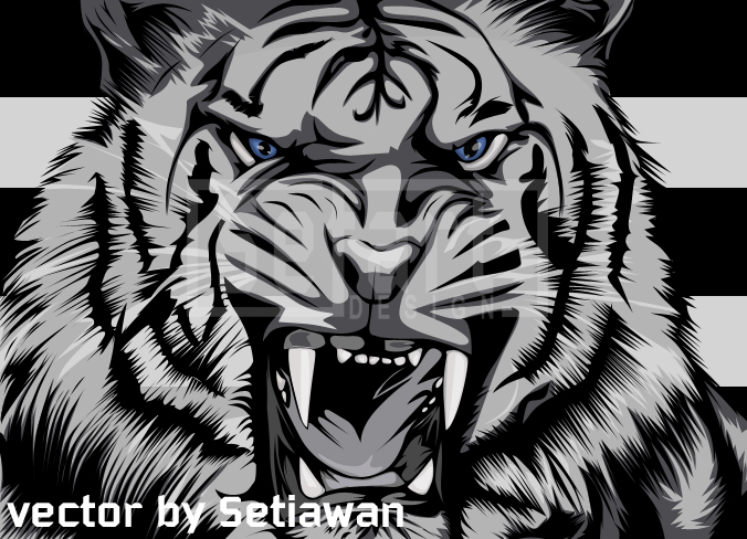 White tiger vector by setiawannr