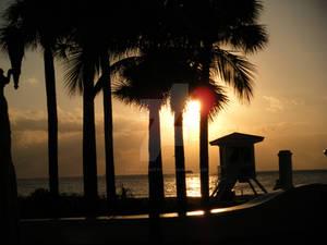 Sunrise 01
