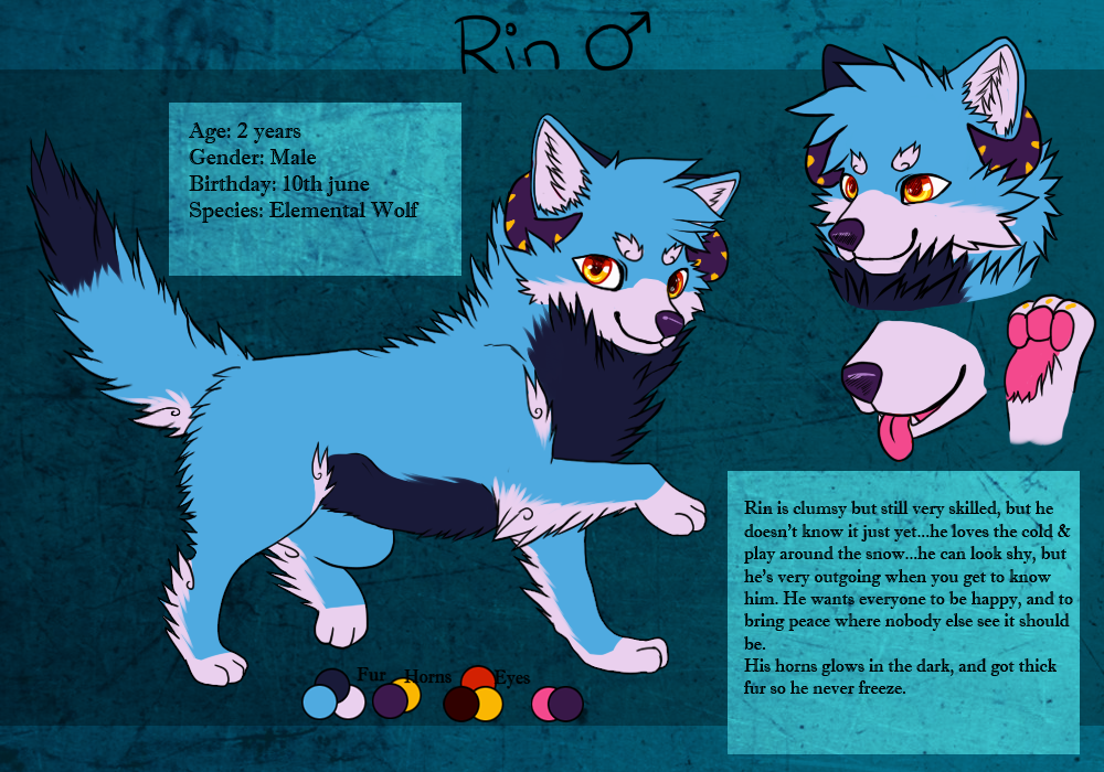 Rin reference sheet by RainSoda