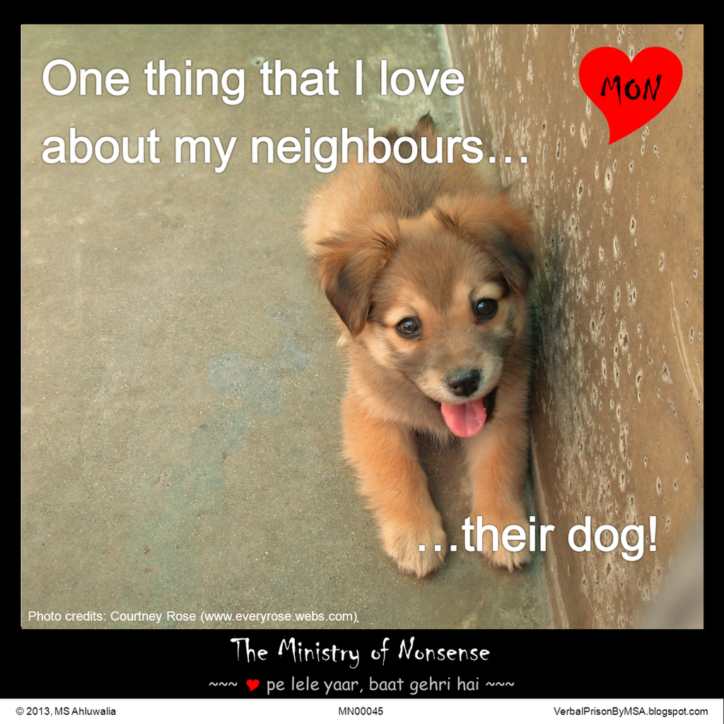 Neighbour S Dog Is Whimpering And Barking