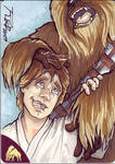 Luke and Chewie