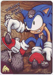 Welcome home Sonic