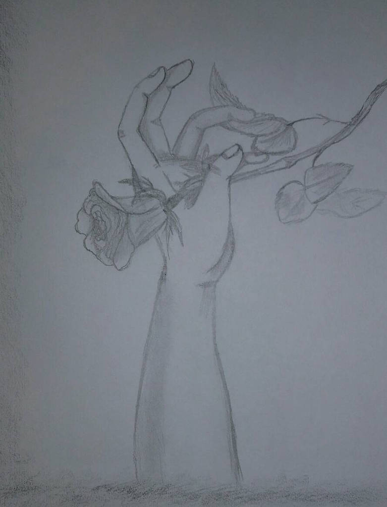 Eine rose by KiburakMangakka-san