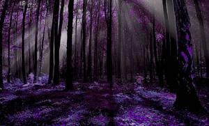 The Sacred Wood