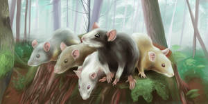 [Rat ARPG] Forest fun (commission)