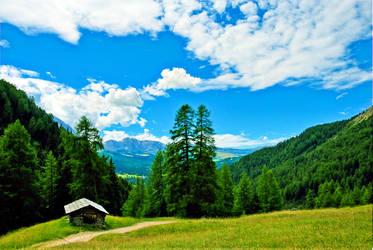 wonderland_7 by tolgagonulluleroglu
