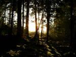 Sunset by Azarah